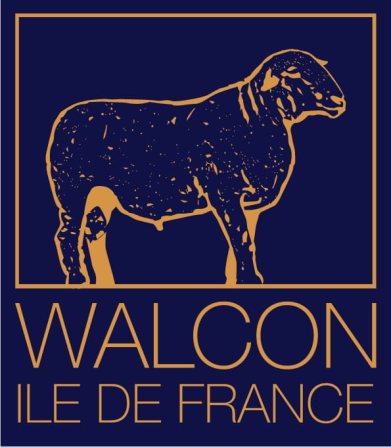 walcon-menu-logo